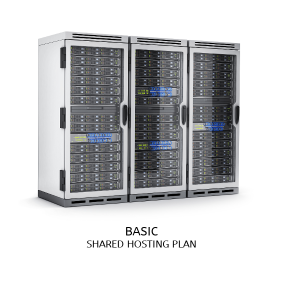 Basic Hosting Plan