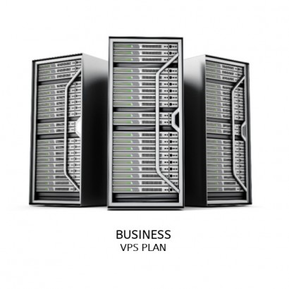 Business VPS