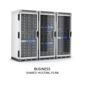 Business Hosting Plan