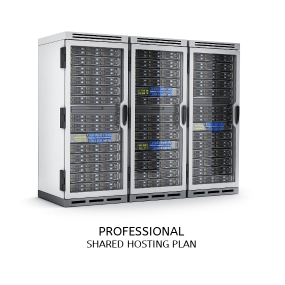Professional Hosting Plan