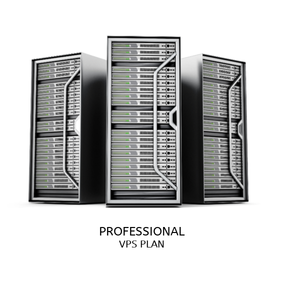 Professional VPS